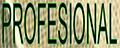 Formatia Profesional barlad