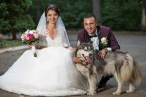 Fotograf Vaslui - fotograf nunta Vaslui